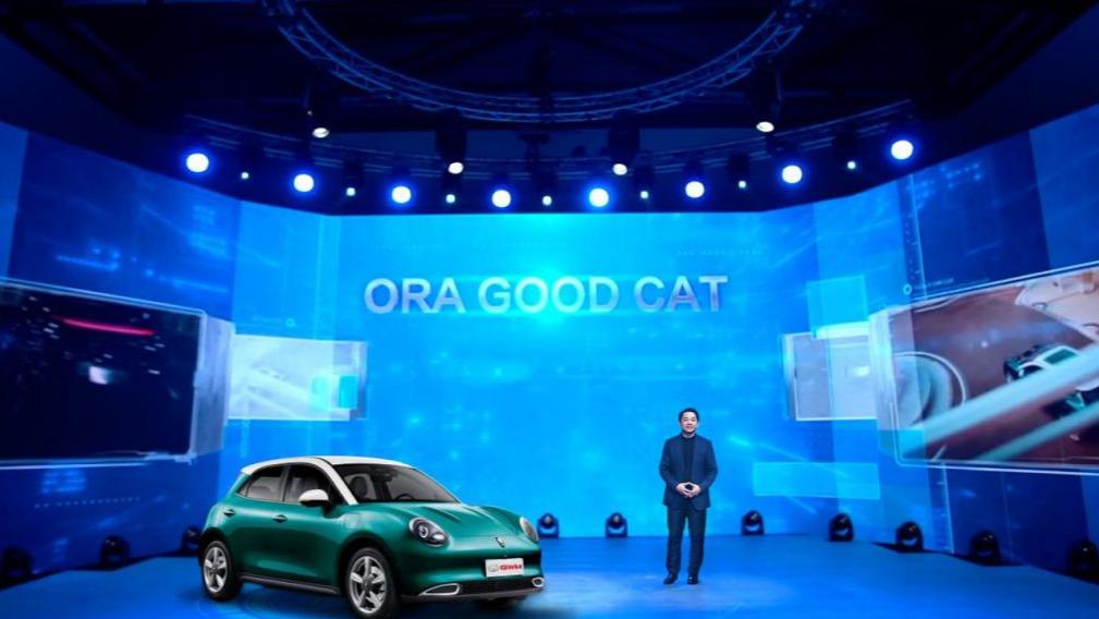 长城汽车总裁王凤英两会建言提速新能源汽车产业全球化