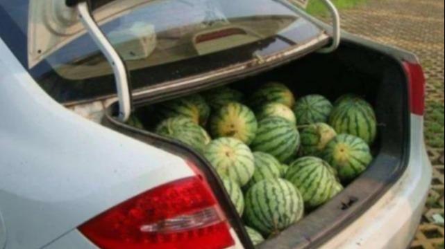 车上放西瓜被罚200,大爷怒问交警,后备箱买来当摆设?